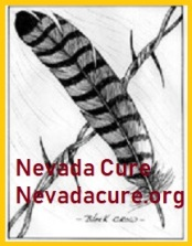 Logo Nevada Cure Hawk-Black Crow
