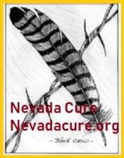 Logo Nevada Cure Hawk-Black Crow
